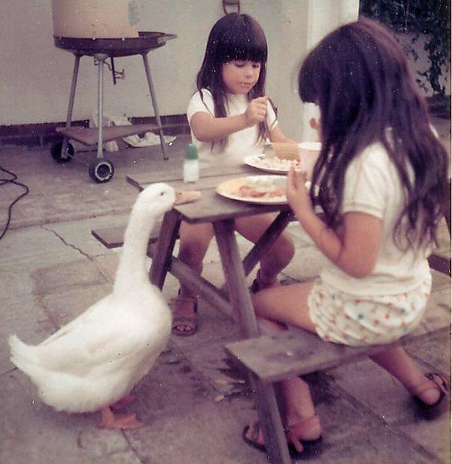 Quack1
