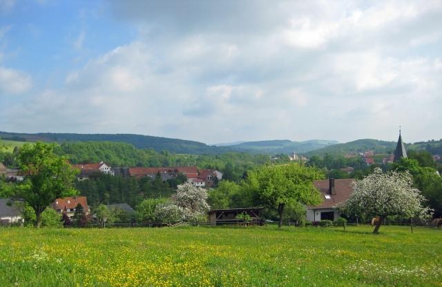 Springview